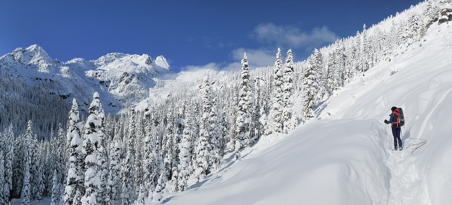 A Panoramic View of Woman Snowshoeing The Snow Lake Trail. Snoqualmie Pass Cascade Mountains Washington.